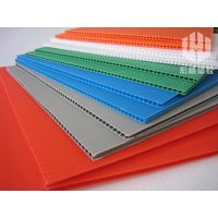 Eco-friendly Twin Wall PP Plastic Sheet