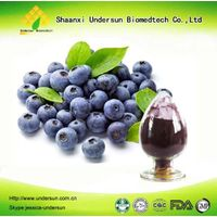 Blueberry Extract Powder / Bilberry Extract Powder / Blueberry Anthocyanin