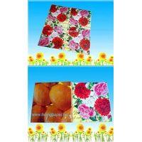 Printing party napkin thumbnail image