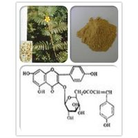 Tribulus Terrestris extract 20%-90%