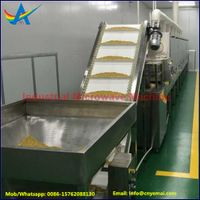 High Efficiency Cereal Roaster,Grain Processing machine,Cereal Sterilizer thumbnail image