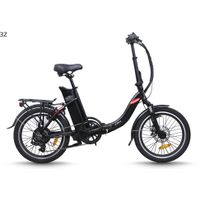Folding electric bike(FR-TDN13Z)