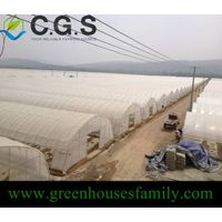 Single High Tunnel Greenhouse on Sale thumbnail image