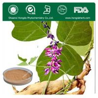 Radix Pueraria Extract 100%pure powder 40%,60%,80% Flavones/Puerarin thumbnail image
