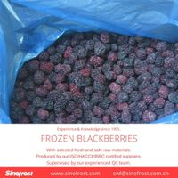 IQF Blackberries/Frozen Blackberries/IQF Blackberry/Frozen Blackberry thumbnail image