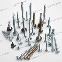 Machine screw/Micro screw/Roofing screw/Security screw/Self drilling screw/Self tapping screw