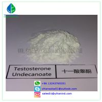 99% Steroid Hormone Testosterone Undecanoate Powder CAS 5949-044-0 for Bodybuilding Judy thumbnail image