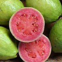 Fresh Guava thumbnail image