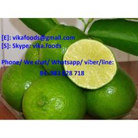 Fresh Lime with the Best Price
