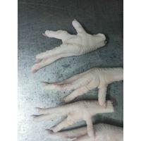 chicken paw