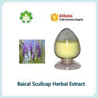scutellaria baicalensis root extract balcalin 92-95%