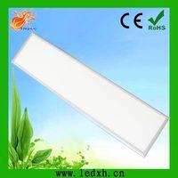 China direct factory 300*1200*12mm LED panel light