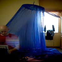 medicated mosquito nets thumbnail image