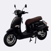 EEC COC L1e New European popular Electric Scooter Ninja with top speed 45km/h long range