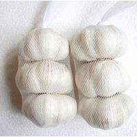 garlic price in china white garlic alho freash garlic