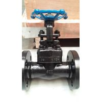 Forge steel flange ends gate valve