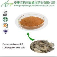 Euconmmia extract/Euconmmia leaf extract