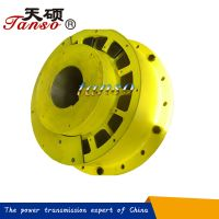 TLW highly elastic coupling