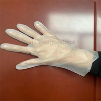 TPE Gloves    Disposable Gloves Supplier    Fengwang Innovative gloves