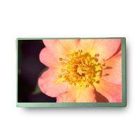 PVI LCD Display PM070WXG a-Si TFT-LCD, LCM. 7 inch