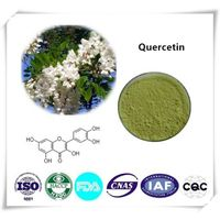Quercetin 95% Cas number:117-39-5  HPLC 1kg/bag