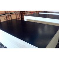Black Film Faced Plywood with best price