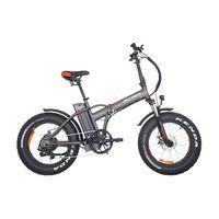 PETRIGO Electric Bicycle Fat eBike Cheap Mountain bike TDN01Z-fat