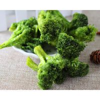 Vacuum Fried Broccoli Chips