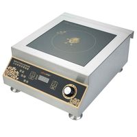 Commercial high power induction cooker with 5000 Watt In Guangdong Vendor YIPAI
