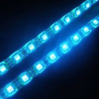 White/ warm white 12v 30leds rgb led strip 5050