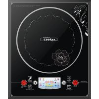 Fashionable induction cooker 20B25