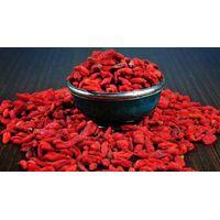 Ningxia Zhongning Wolfberry 420pcs/50g