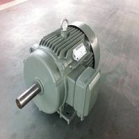 YX3 High efficiency SERIES THREE PHASE INDUCTION MOTOR