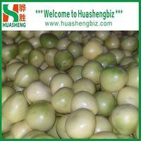 Hot Selling Chinese Fresh Honey Pomelo