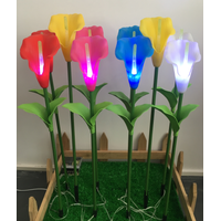 callalily flower with led light for house or grass thumbnail image