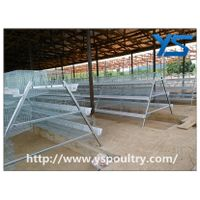 A Frame Automatic Layer Chicken Cage Poultry Equipment