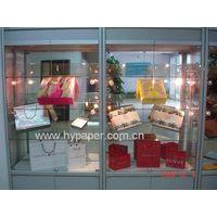 Luxurious Paper Euro Shopping Bag