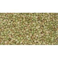 raw buckwheat kernel