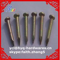 concrete cap nails factory from china manufacture