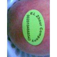 Fresh Egyptian Peach