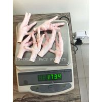 Frozen Chicken Feet and Paw thumbnail image