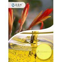 Conjugated Linoleic Acid CLA EE 80% thumbnail image