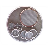 SS 304, 316 Stainless Steel Wedge Wire Mesh Filter Leaf Disc Custom for Clear Filtering thumbnail image