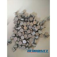 Rivets Supplier