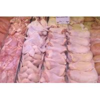 best quality frozen chicken whole parts thumbnail image