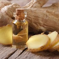 100% PURE REFINED GINGER OIL WITH BEST MARKET PRICE