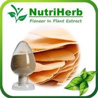 Natural Tongkat Ali Root Extract/Eurycoma Longifolia Extract Powder thumbnail image