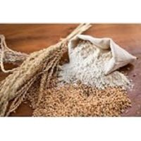 best quality wheat flour whole sale price