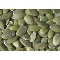 2014 new crop pumpkin seed GWS