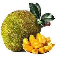 Jack Fruit - HS Code 0810.90.50 thumbnail image